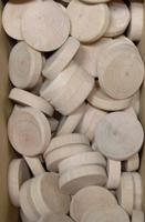 Bukové suky (větev), 30 x 7 mm, 1 ks