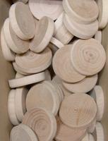 Bukové suky (větev), 35 x 7 mm, 1 ks