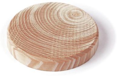 Borovicové suky (větev), 30 x 7 mm, 10 ks - 1