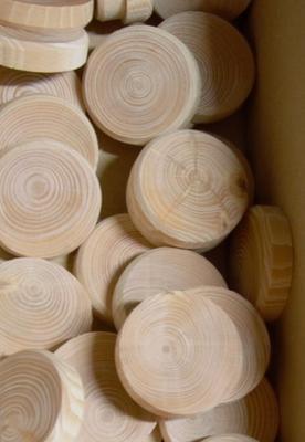 Smrkové suky (větev), 30 x 7 mm, 1 ks